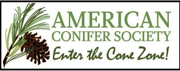 American Conifer Society