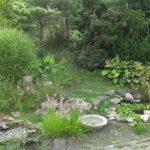 Pond Construction at Bergen Water Gardens Churchville, New York