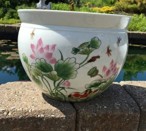 Chinese Bowl lotus Pot- Beautiful Lotus (H)
