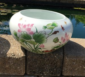 Chinese Bowl lotus Pot- Beautiful Lotus