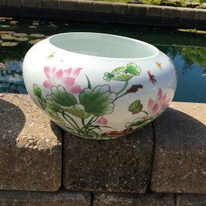 Chinese Bowl lotus Pot- Beautiful Lotus