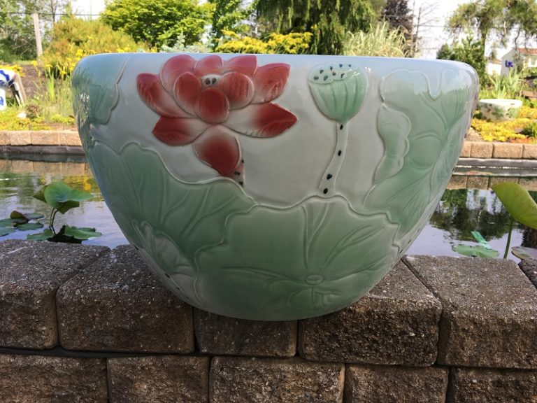 Chinese lotus Pot- Light Green Lotus (M-9)