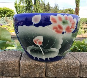 Chinese lotus Pot- Blue Lotus (M-10)