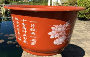 Plastic Medium pot with decal
