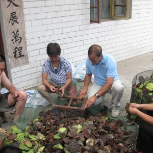 2010 Wuhan China