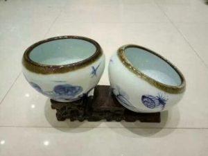 Micro Lotus Pot